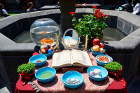 Una prueba de la culinaria iraní y sus sabores persas, llega al Museo Nacional de las Culturas del Mundo